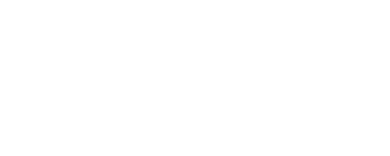 FLIR PREMIUM PARTNER